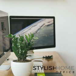 Welcome to Our Stylish Home Office Blog!