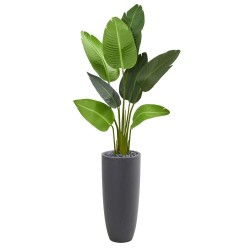 "5.5"" Traveler Palm Artificial Tree in Gray Planter"