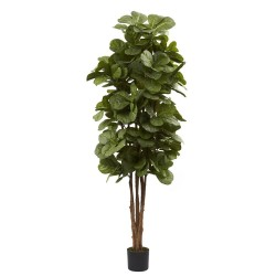 """6"""" Fiddle Leaf Fig Tree"""